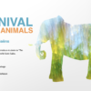 carnival of the animals teaching guide